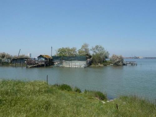 Backwaters__Ravenna
